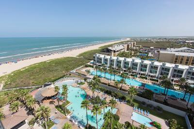 South Padre Island Condo/Townhouse For Sale: 310 Padre Blvd. #1219/122