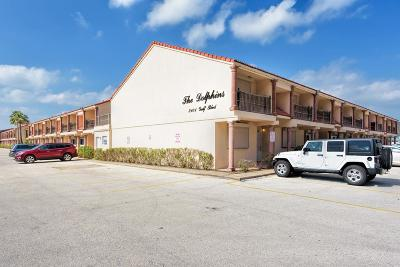 South Padre Island Condo/Townhouse For Sale: 3101 Gulf Blvd. #B-27