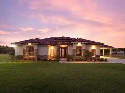 Harlingen Single Family Home For Sale: 15505 Hossway Rd.