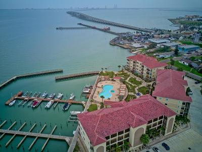 Port Isabel Condo/Townhouse For Sale: 301 E Houston St. #2202