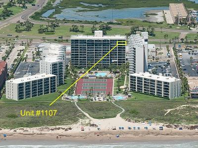 South Padre Island Condo/Townhouse For Sale: 404 Padre Blvd. #1107