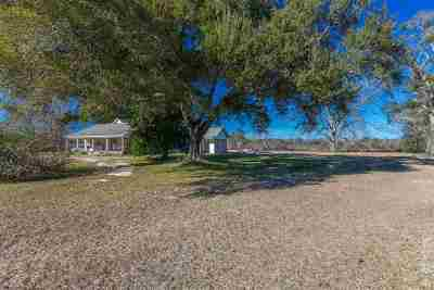 Angelina County, Jasper County, Nacogdoches County, Newton County, Sabine County, San Augustine County, Shelby County Farm & Ranch For Sale: 3296 Cr 517