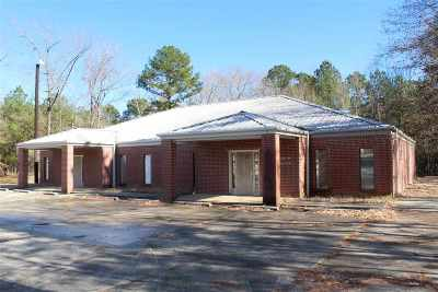 Angelina County, Jasper County, Nacogdoches County, Newton County, Sabine County, San Augustine County, Shelby County Commercial For Sale: 2035 Worth Street