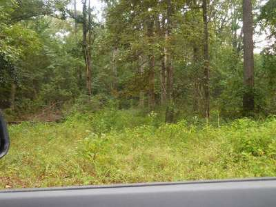 Hemphill TX Residential Lots & Land For Sale: $6,200