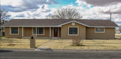 Seminole TX Single Family Home For Sale: $279,500