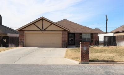 Seminole TX Single Family Home For Sale: $219,000