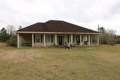 Single Family Home For Sale: 164 Co. Rd. 509