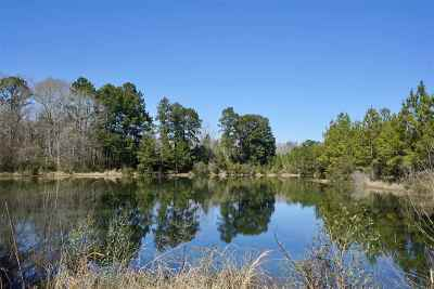 Broaddus Residential Lots & Land Accepting Backups: 101 Cr 4645 E