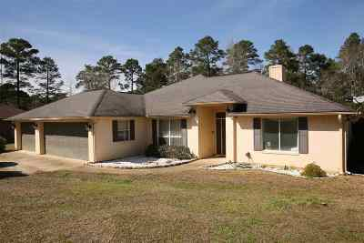 Jasper County Single Family Home For Sale: 139 Kite Lane