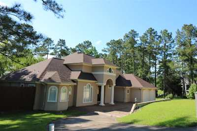 Brookeland Single Family Home For Sale: 389 Landsend Dr.