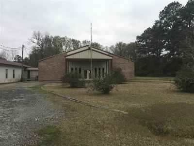 Commercial For Sale: 281 County Road 619