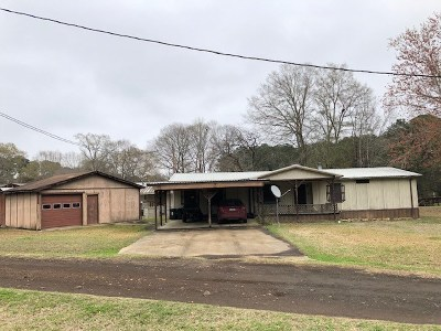 Newton County, Sabine County Single Family Home For Sale: 154 Fern Glen