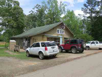 Hemphill Single Family Home For Sale: 176 Rice St.