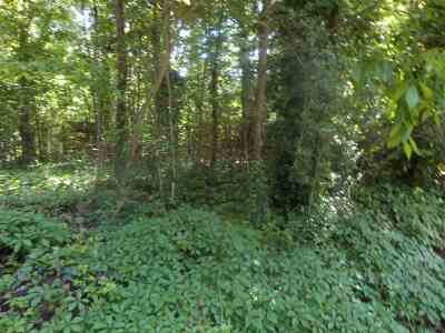 Residential Lots & Land For Sale: 166 Chinquapin #Lots 116