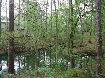 Burkeville Residential Lots & Land For Sale: 160 Dogwood