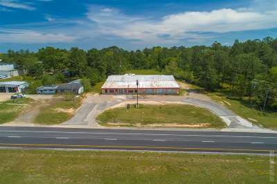 Angelina County, Jasper County, Nacogdoches County, Newton County, Sabine County, San Augustine County, Shelby County Commercial For Sale: 4190 N Us Hwy 96