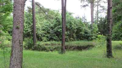 Residential Lots & Land For Sale: Cr 3849