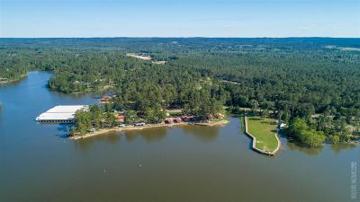 Angelina County, Jasper County, Nacogdoches County, Newton County, Sabine County, San Augustine County, Shelby County Commercial For Sale: 4404 Sam Rayburn Parkway