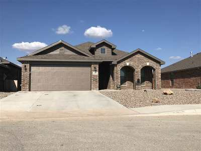 Midland Single Family Home For Sale: 6904 Lone Star Lane
