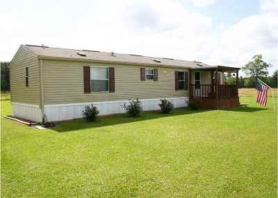 Newton Manufactured Home For Sale: 8105 S State Texas Hwy 87