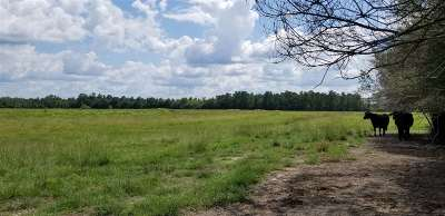 Kirbyville Residential Lots & Land For Sale: Fm 2460