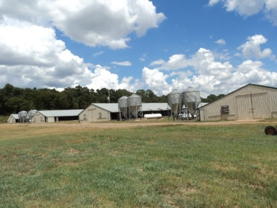 Angelina County, Jasper County, Nacogdoches County, Newton County, Sabine County, San Augustine County, Shelby County Farm & Ranch For Sale: Fm 95