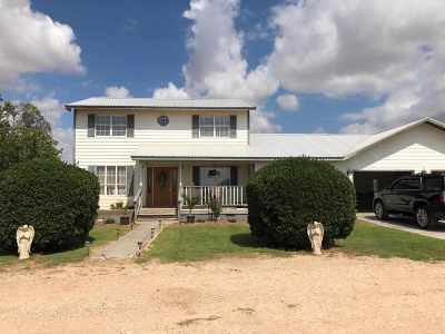 Single Family Home For Sale: 295 Us Hwy 180 E