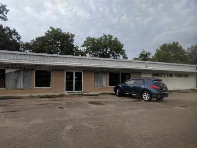Kirbyville Commercial For Sale: 302 N Margaret #Hwy 96