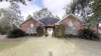 Jasper County Single Family Home For Sale: 168 Cr 818