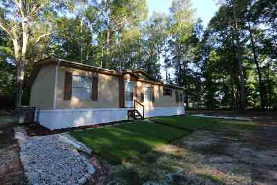 Jasper County Single Family Home For Sale: 128 County Road 358 #Highway