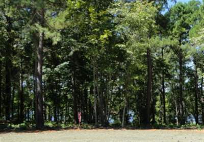 Residential Lots & Land Sold: 205 Cypress Royale W