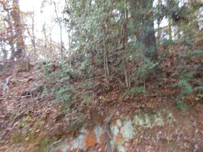 Residential Lots & Land For Sale: River Oaks #Springhi