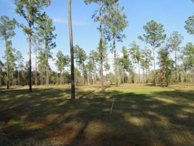Burkeville, Hemphill, Hemphill Sub-division, Milam, Shelbyville Residential Lots & Land For Sale: 478 Old Tejas Trail E