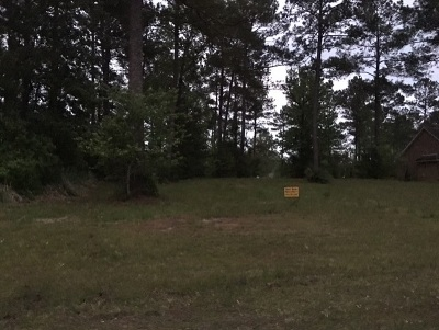 Pineland Residential Lots & Land For Sale: 10 Bear Creek Dr