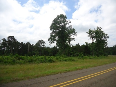 San Augustine Residential Lots & Land For Sale: 371 Fm 3017