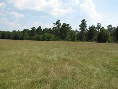 Newton Residential Lots & Land For Sale: 941 Co. Rd. 2014
