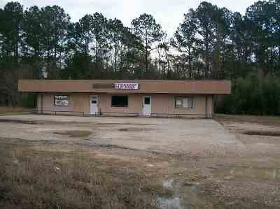 Kirbyville Commercial For Sale: 406 N Margaret
