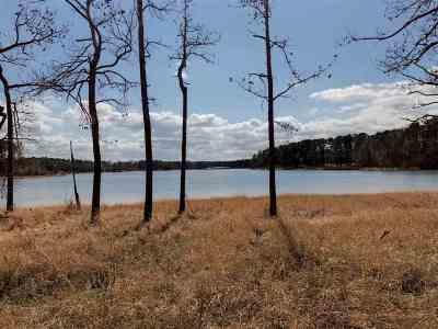 Huntington, Zavalla, Brookeland, Etoile, Broaddus, Bronson Residential Lots & Land For Sale: Lot 91 Sec 10 Birch Park Ln