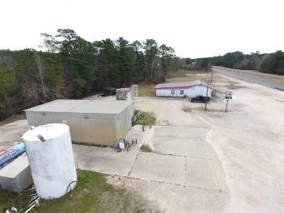 Angelina County, Jasper County, Nacogdoches County, Newton County, Sabine County, San Augustine County, Shelby County Commercial For Sale: 8652 N Us Hwy 96