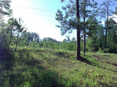 Huntington, Zavalla, Brookeland, Etoile, Broaddus, Bronson Residential Lots & Land For Sale: Cr 200