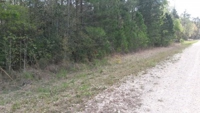 Residential Lots & Land Sold: W Grigsby Rd