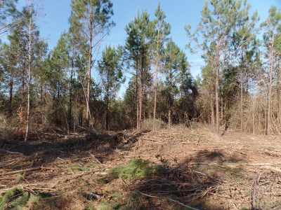 Newton Residential Lots & Land For Sale: 29 +/- Ac Fm 1012