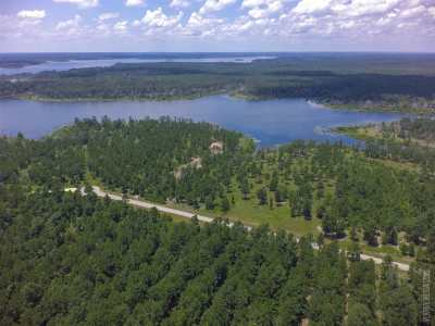 Huntington, Zavalla, Brookeland, Etoile, Broaddus, Bronson Residential Lots & Land For Sale: 680 Private Road 8356 #Lot 22
