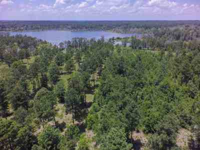 Huntington, Zavalla, Brookeland, Etoile, Broaddus, Bronson Residential Lots & Land For Sale: 500 Private Road 8356 #Lot 30