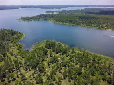 Huntington, Zavalla, Brookeland, Etoile, Broaddus, Bronson Residential Lots & Land For Sale: 474 Private Road 8356 #Lot 31