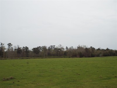 Newton Residential Lots & Land For Sale: Farm Market Road 2626