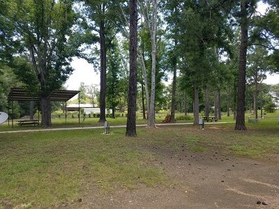 Angelina County, Jasper County, Nacogdoches County, Newton County, Sabine County, San Augustine County, Shelby County Commercial For Sale: 5476 Hwy 21e