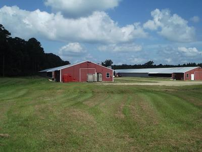 Angelina County, Jasper County, Nacogdoches County, Newton County, Sabine County, San Augustine County, Shelby County Farm & Ranch For Sale: 13047 Fm 139