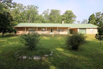 Burkeville Single Family Home For Sale: 171 Joley Drive