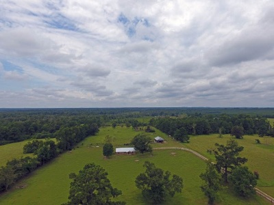 Kirbyville Single Family Home For Sale: 380 Cr 474